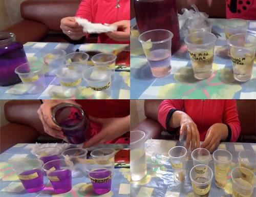 Подготовка семян перца к посадке